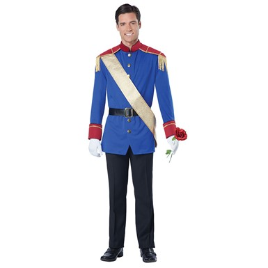 Mens Storybook Prince Halloween Costume