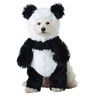 panda pooch dog halloween costume