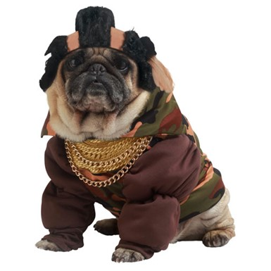 Pity The Fool Pet Mr. T Dog Halloween Costume