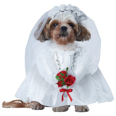 Puppy Love The Bride Halloween Pet Costume