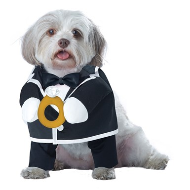 Puppy Love the Groom Halloween Pet Costume