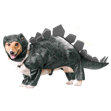 Stegosaurus Dinosaur Dog Animal Planet Pet Costume